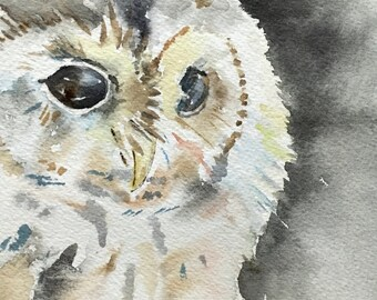 Night owl - 5x7 Original watercolor painting - bird, nature art, moon light, impressionist, charcoal, colorful, Japanese inspired, cute