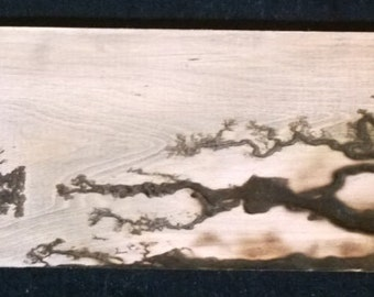 First High Voltage Wood Burning