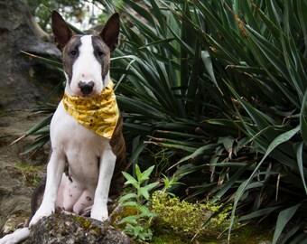 Banana bandana for dog collar - to slip on a dog collar