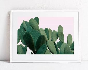 Cactus Print Plant Print, Large Printable Art Print Pink Green Modern Digital Print DIGITAL DOWNLOAD Art, Photography Print Horizontal 24x36