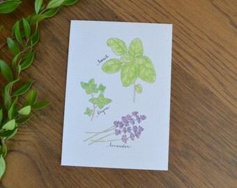 Basil Thyme Lavender Print, Herb Trio Wall Art, Kitchen Watercolor Print, Lavender Art, Herb Painting, Kitchen Art, Botanical Prints, Floral
