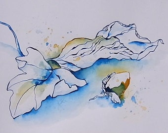 Original ink drawing nature still life leaves nuts drawing pen and ink drawing