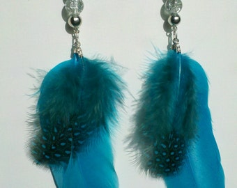 Turquoise Feather Earrings