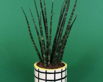 Tiny Grid Pot