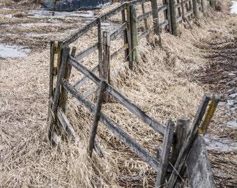 Dilapidated Fence