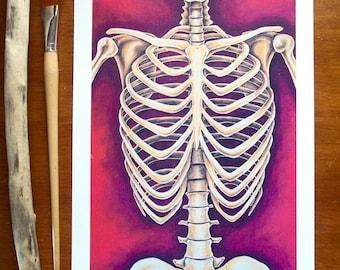 Skeleton Art Print 11x17