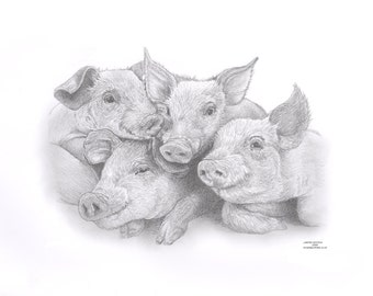 "PIGLET Pig ""chums"" Limited Edition art drawing print signed by UK artist"