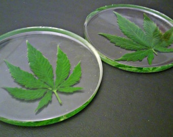 Real Cannabis Leaf Coasters- Set of 2
