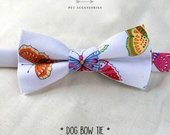 dog bow tie – butterflies