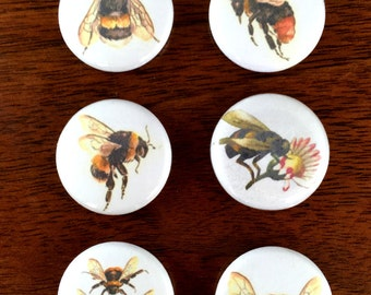 "Vintage Bees 1"" pin back Button and Magnet set of 6"