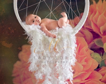 Dream Catcher Background or Stock Photo for composite newborn Photography