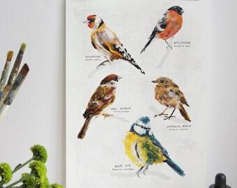 Garden Birds Print