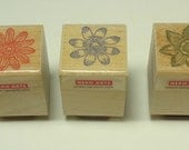 Set Of Three Floral Wood Mounted Rubber Stamps From Hero Arts Daisy Daffodil