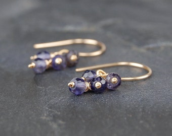 Iolite earrings, small dangle earrings, simple and dainty handmade 14k gold filled wire wrapped earrings - Pixie