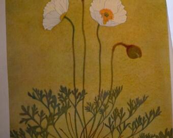 Botanical Print - Pavot des Alpes - Flower Lithographs A-lpine flowers - glacial - Aconit - framable flower prints - alpine beauties
