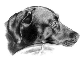 Dog Portrait Dog Art Black Lab Print Pet Drawing Gift Idea