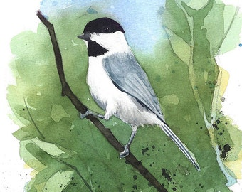 Chickadee Watercolor Painting - Fine Art Archival Print- Signed Giclée - Limited Edition Bird Art by Laura D. Poss