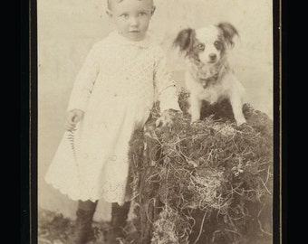 Vintage 1890s Cabinet Card Photo / Young Girl with Little Dog / Matching Hair :)