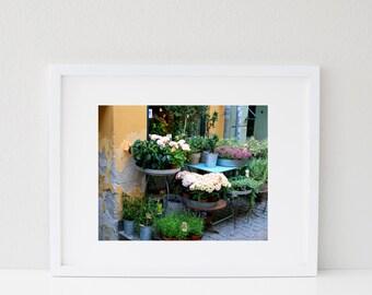 Flower Market Print - Copenhagen Photography - Rustic Garden Decor - Hydrangea Wall Art Gold Blue Photo Denmark Travel Photograph