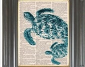 Sea turtle print on dictionary or sheet music page COUPON SALE Aqua blue Dictionary art print Wall decor Digital print Marine print No 2083