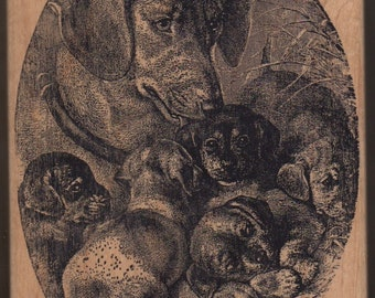 Large Rubber Stamp Detailed Scene with Litter of Puppies