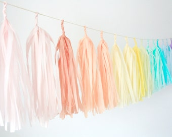 Pastel Rainbow Tassel Garland - Nursery decor . 1st Birthday Decorations . High Chair Banner . Gender Reveal . My Little Pony Party