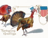 Thanksgiving Card - Patriotic Turkey and Hen - Uncle Sam Tom