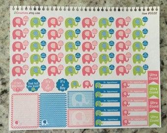 Pregnancy Planner Stickers, Pregnancy Countdown, Pregnancy Tracker, Erin Condren Stickers, Coil Insert Sticker - 0028