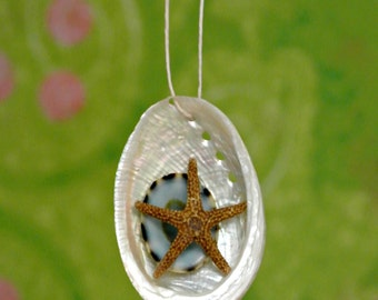 Starfish Seashell Ornament Pearly Abalone Shell Natural Turquoise Teal Limpet Holiday Decoration Mermaid Embellished Shell - TheSandbar
