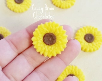 Chocolate Sunflowers (12)
