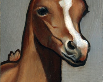 Baby Arabian Horse Original Oil Painting