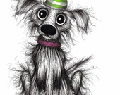Fluffy the cute puppy Print download Fashionable trendy little pet dog pooch pup wearing comedy striped hat and smart collar Animal picture