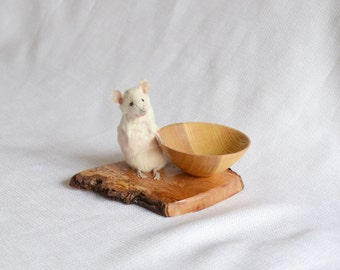 Taxidermy mouse with hand turned wood bowl.