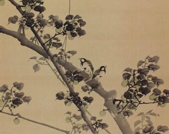 Antique Japanese Fine Art Wall Hanging Scroll Painting Bird and Flower Kakejiku – 1602106