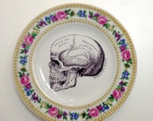 Vintage Anatomical Skull Plate Altered Art gothic