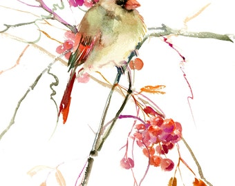 Female Caridnal Bird, 14 X 11 in, original watercolor painting, female cardinal art birds and flowers, asian art, cardinal and berries