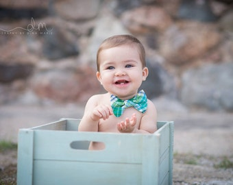 Blue Green Plaid Bow Tie, Bow Tie Photo Prop