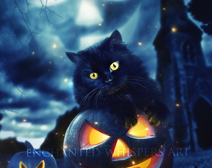 adorable black kitten cat on pumpkin Halloween art print