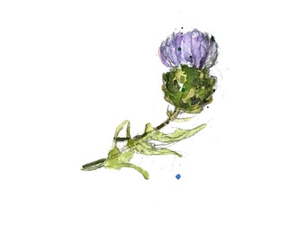 Thistle painting