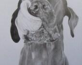Custom Pet Portrait Graphite Drawing 5x7 8x10 9x12 11x14 from photograph