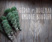 Cedar + Rosemary Smudge Bundles -> ceremony -> gathering -> smudging -> Native American -> ritual -> apothecary -> meditation -> energy work
