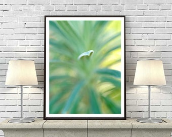 Nature photography- abstract wall art modern photograph 11x14,12x16 yellow turquoise artwork, grass art, large botanical print, green blue