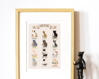 decorative art print - Cats Breed