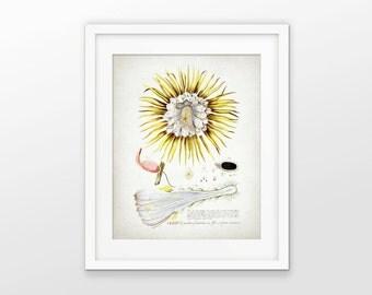 Cereus Flower Art Print - Night Blooming Cactus Flower - Yellow Cactus Flower - Botanical Print - Single Print #1619 - INSTANT DOWNLOAD