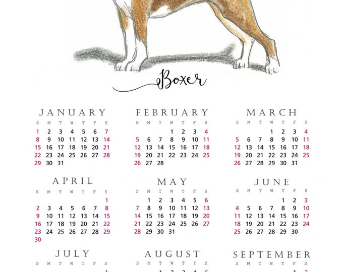 Boxer 2017 yearly calendar