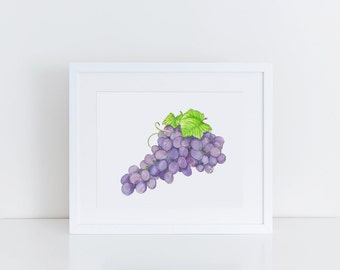 Red Grapes Art Print - Grapes Watercolor Art Print - Kitchen Decor Wall Art - Kitchen Art - Original Art Print