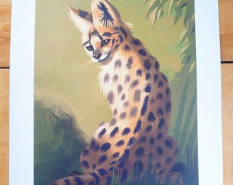 Serval Cat with Leaves Print 11X14