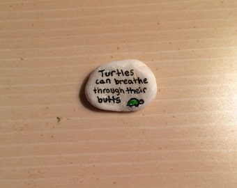 Turtle Fact Pebble