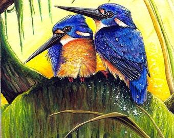 The Glory of Kings - Azure Kingfishers