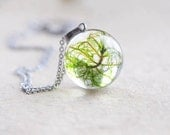 Real moss necklace - resin moss sphere necklace - unique mysterious jewelry